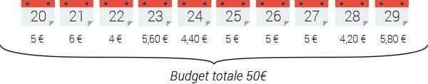inserzione 50 euro budget totale